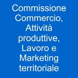 immagine commissione commercio