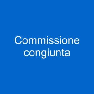 pulsante commissione congiunta